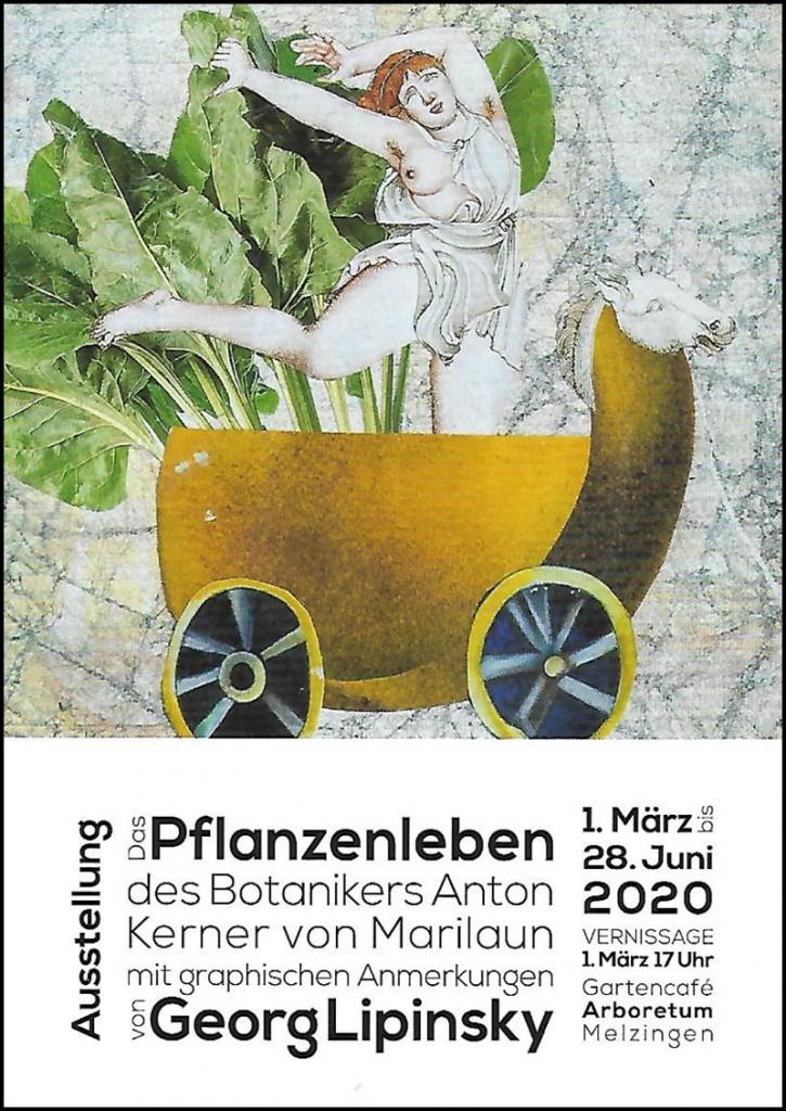 Bild_Pflanzenleben_Lipinsky_web