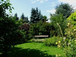 Ruheplatz im Schmetterlingsgarten
