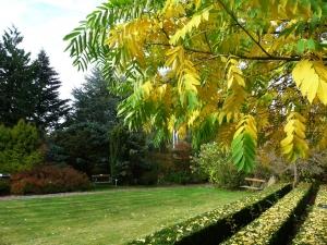 Große Wiese im Herbst